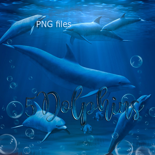 Dolphins PNG (FS/CU)